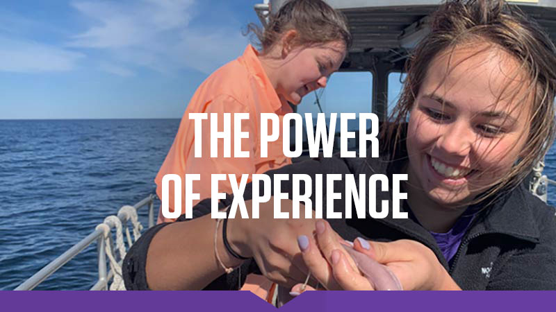 The Power of Experience: Emily McParland '21 examines a marine animal during an immersion course in Maine.