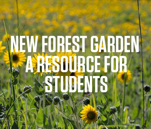 The new forest garden at Green Oaks Biological Field Station will be a resource for students.