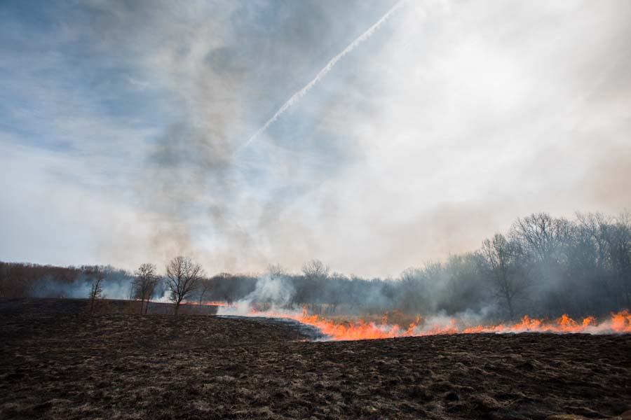 The annual Prairie Burn at Knox College's Green Oaks Biological Field Station.