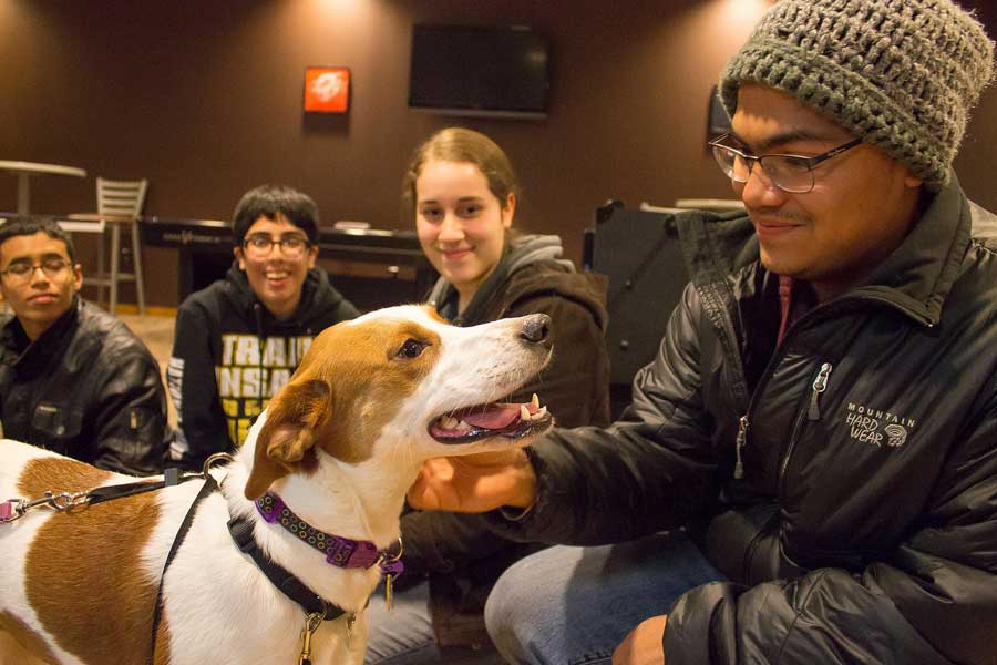 Pause for Paws helps students relieve stress as they get ready for final exams.