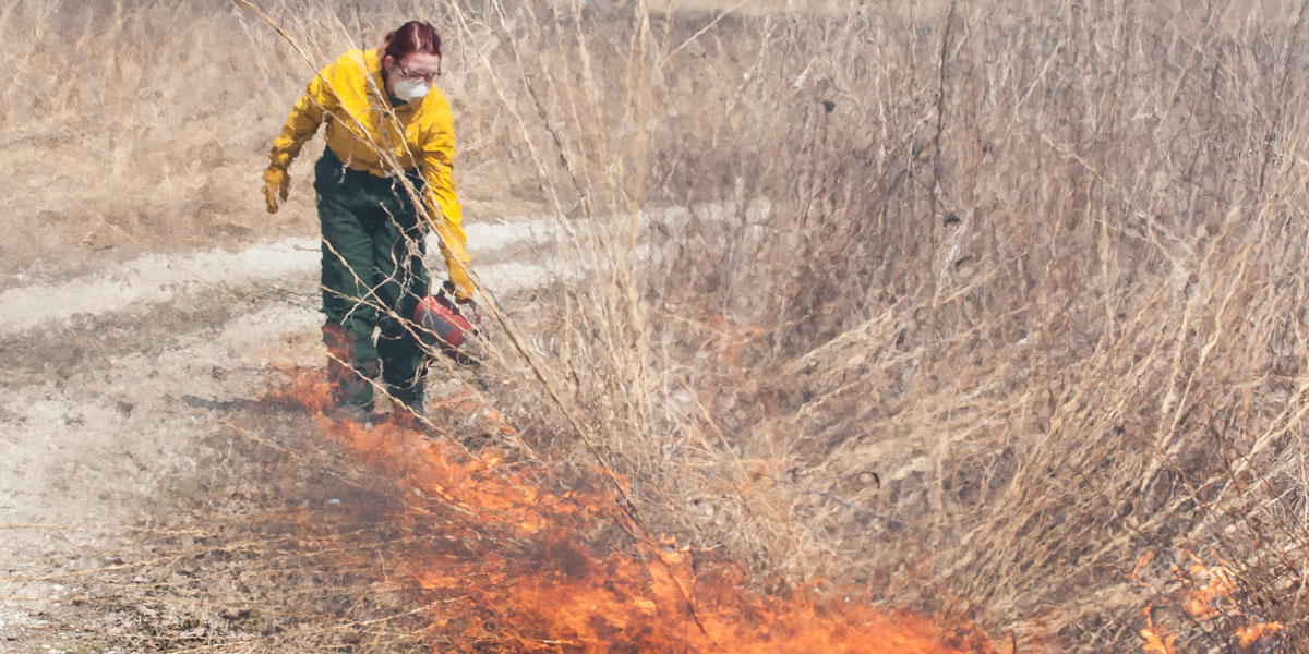 The annual prairie burn at the Green Oaks Biological Field Station.