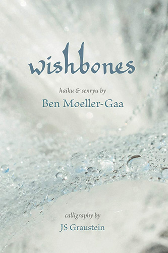 Book Cover - Wishbones