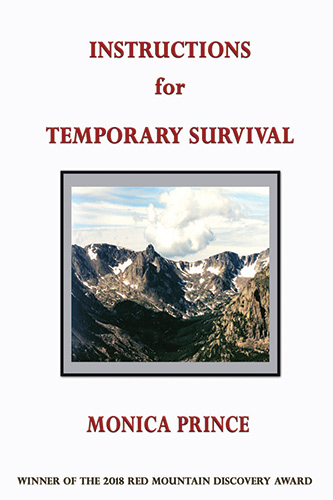 Book Cover - Instructions for Temporary Survival