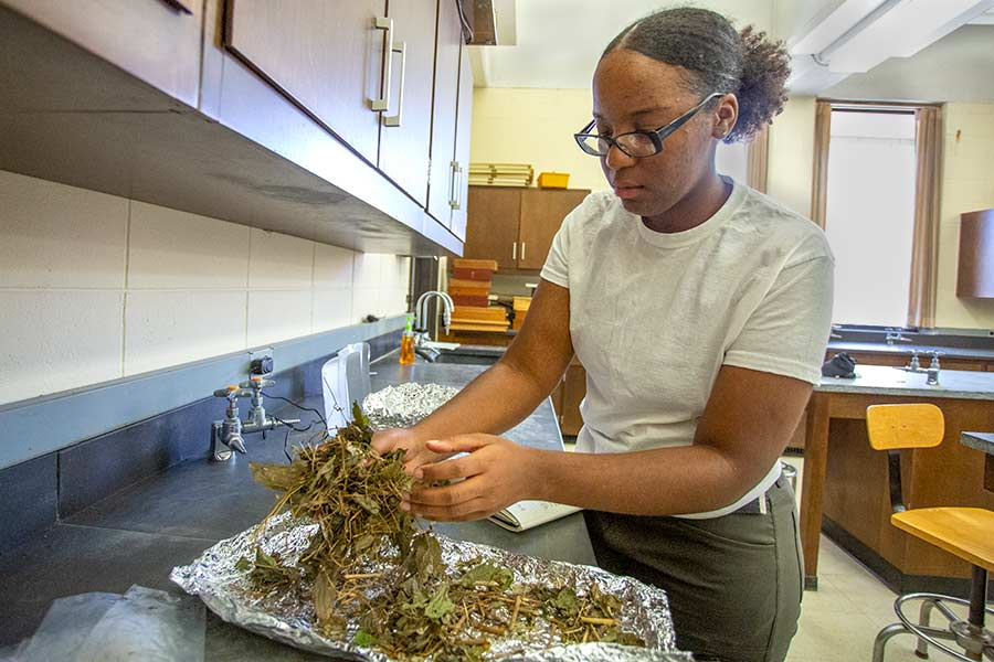 Tresa James '20 conducts research on campus as part of her Green Oaks summer project.