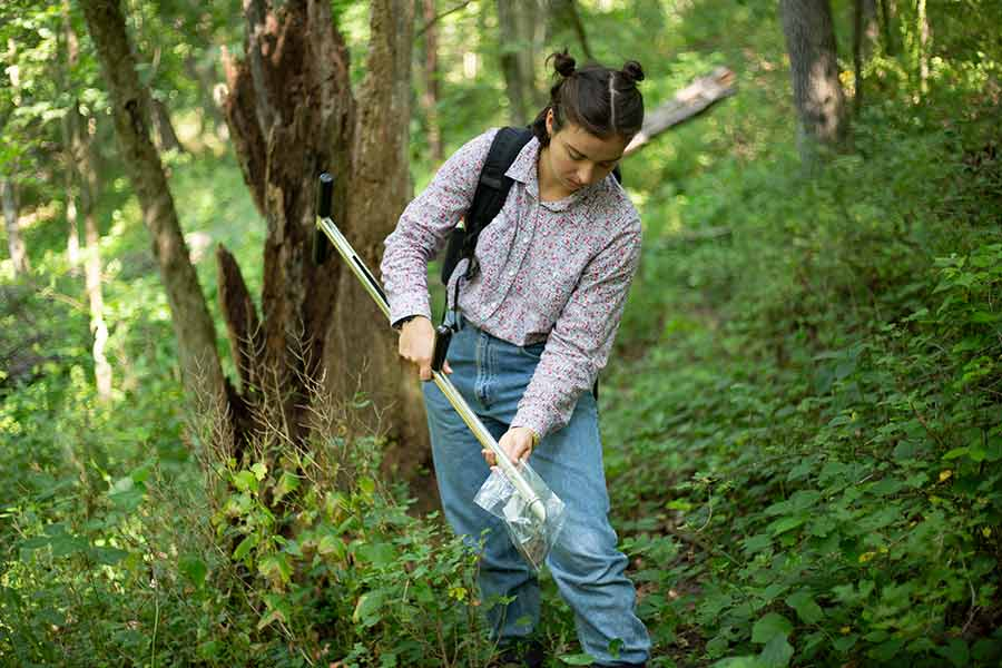 Lydia Allen '20 collects soil samples to measure organic carbon levels at Green Oaks.