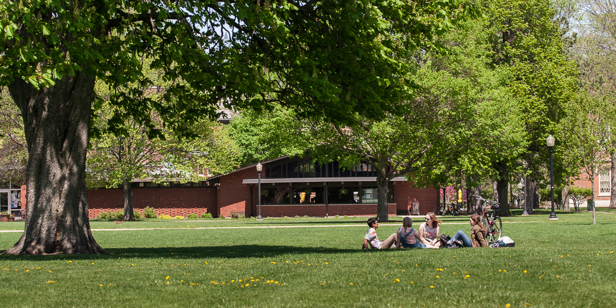 Students meet under a tree, outside the Gizmo.