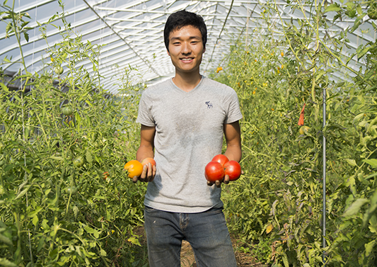 Isaac Lee, manager of the Knox Farm, holds up tomatoes.