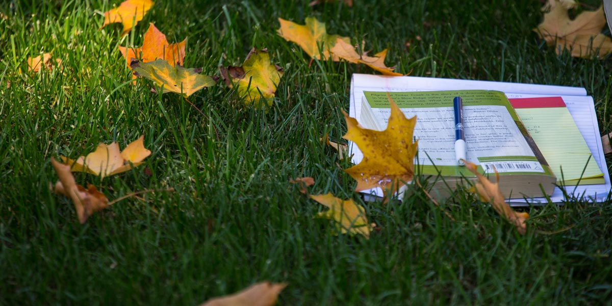 Books and notes on the lawn in an outdoor class.