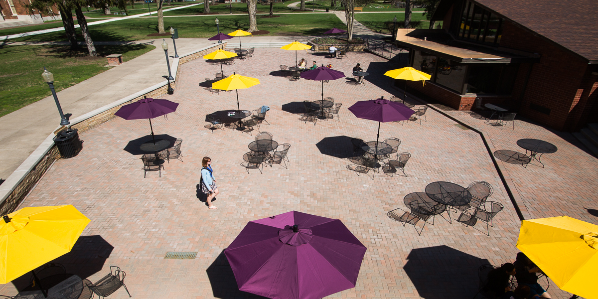 Purple and yellow umbrellas on the Gizmo Patio.