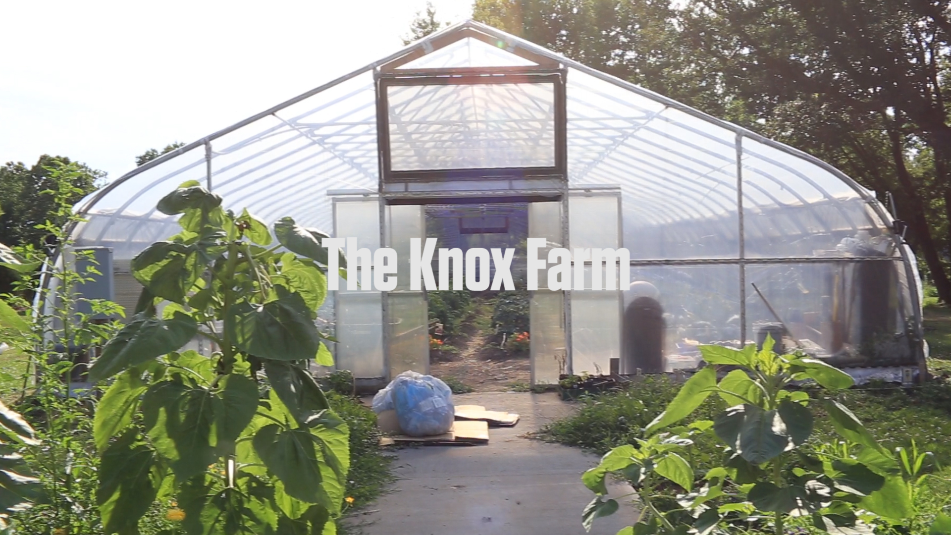 The Knox Farm