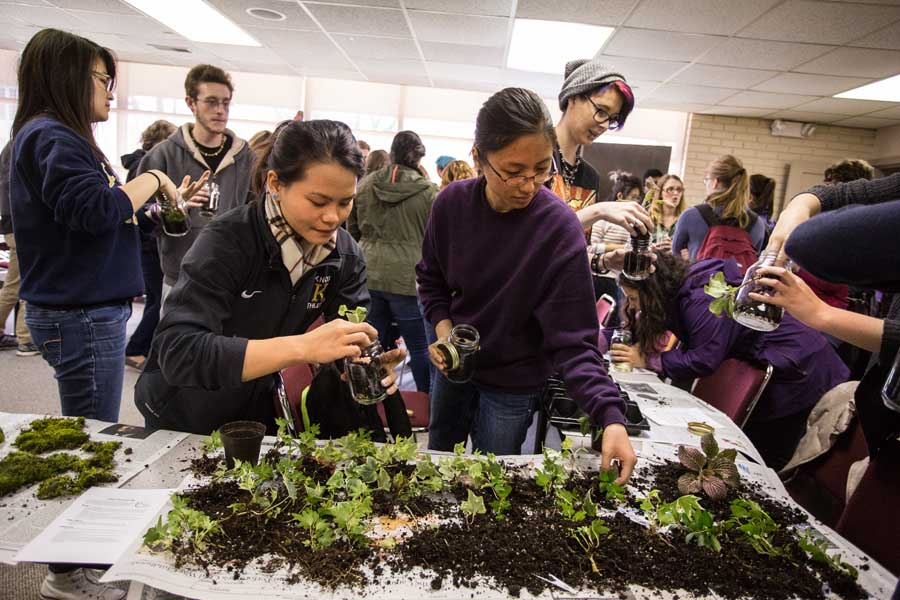 Knox College students build terrariums for Earth Day