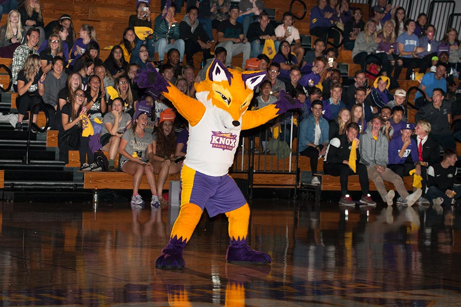 Blaze the Fox is unveiled as Knox College's mascot before a crowd of students and alumni at Homecoming 2016.