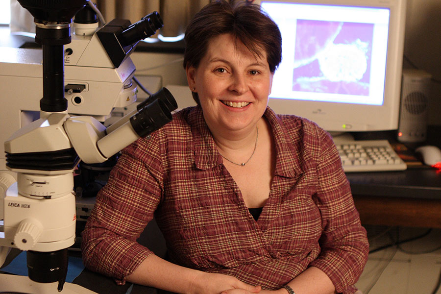 Knox Biology Professor Uses Her Expertise to Explain Ancient Greek Art