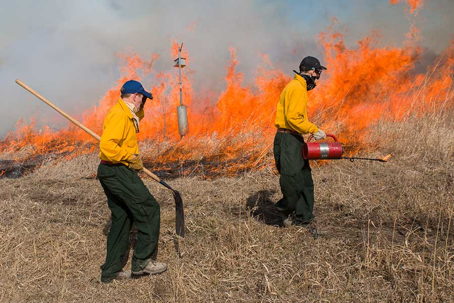 Knox College students conducting the annual prairie burn at Green Oaks Biological Field Station.