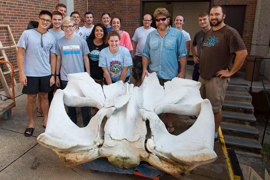 Knox College students and faculty prepare to bring the cranium of a fin whale into the Umbeck Science-Mathematics Center