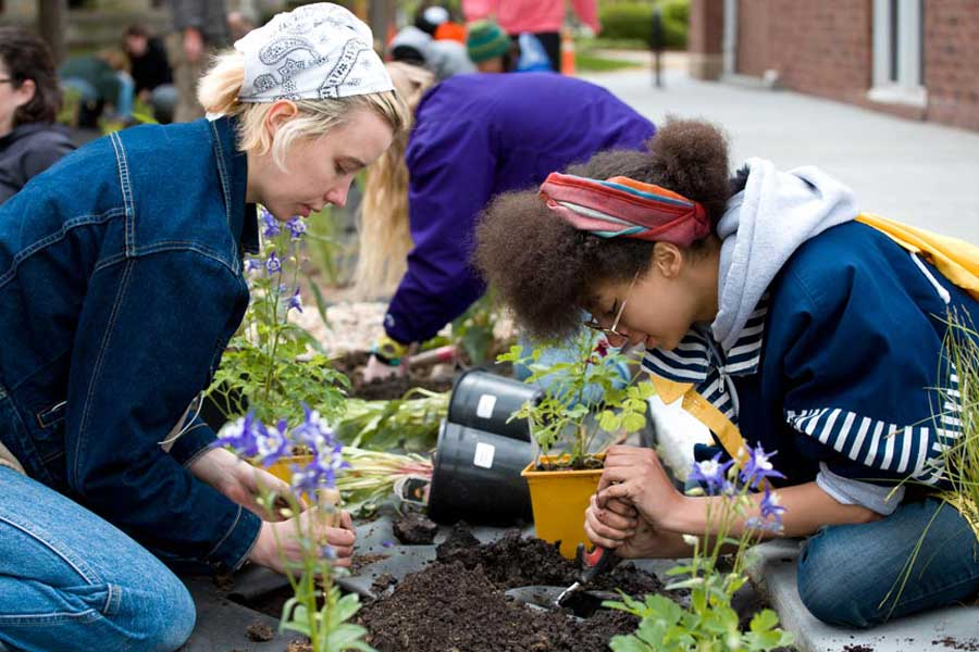 Knox College Students Plant Rain Garden to Control Water Runoff