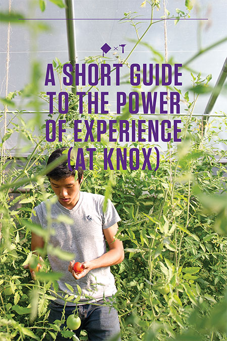 A Short Guide to the Power of Experience (at Knox)